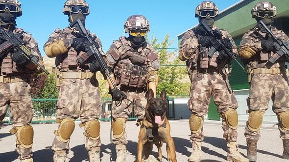 Operasyonların 'özel' köpekleri