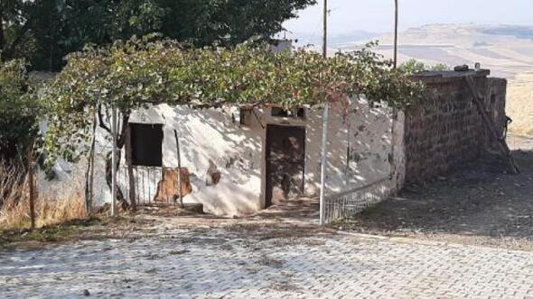 Bağlar belediyesi iki mahallede metruk yapıları yıktı