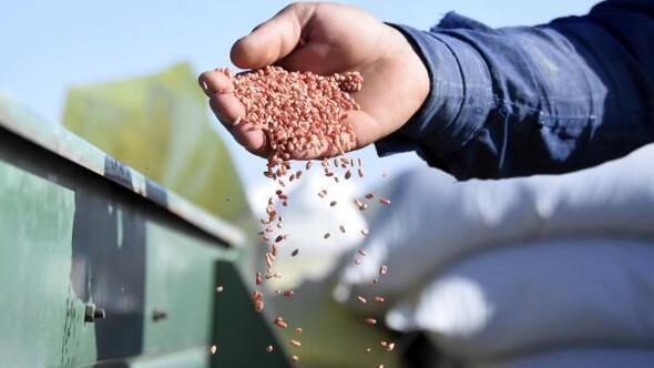 Konya Ovasında, ekim sezonu kuraklık alarmı