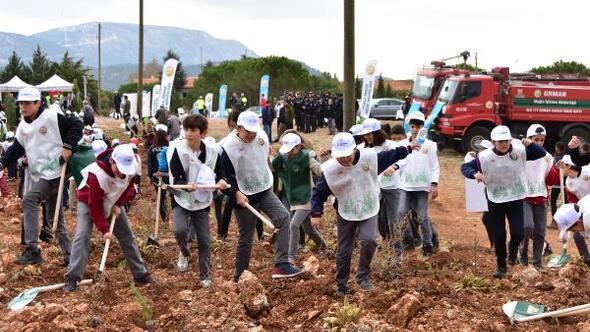 Muğlada 200 bin fıstık çamı fidanı toprakla buluşturuldu