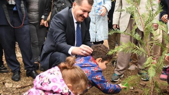 Balıkesirde, 377 bin fidan toprakla buluşturuldu