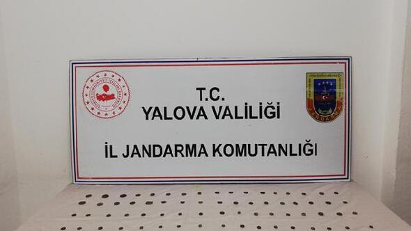 Yalova'da 105 adet sikke ele geçirildi
