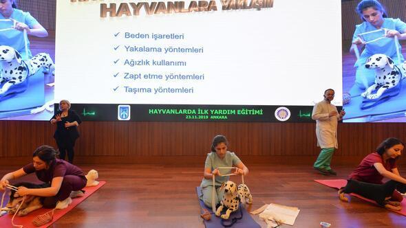 Hayvanseverlere ilk yardım eğitimi
