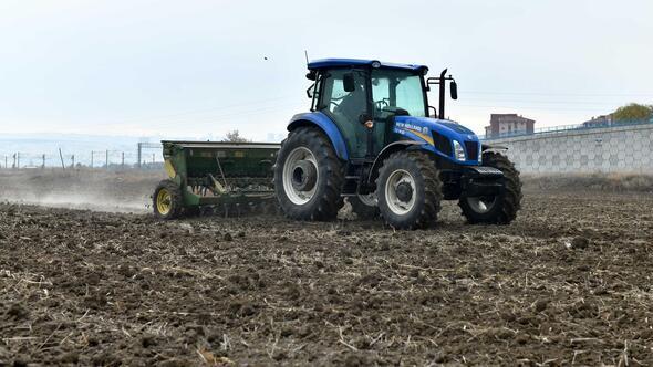 AOÇ'de 300 dekara yem tohumu ekildi