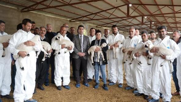 Adanada diplomalı çobanlar yetişiyor