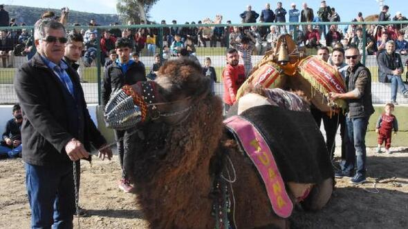 Demrede develere havut kuşatıldı