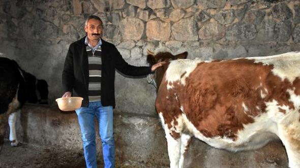 Engelli vatandaş, destek alıp hayvancılık yapmaya başladı