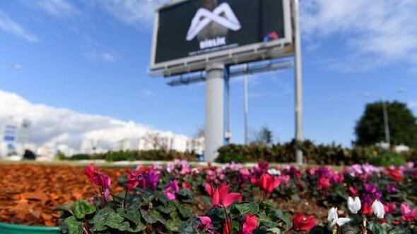 4 ayda 315 bin 151 mevsimlik çiçek dikildi