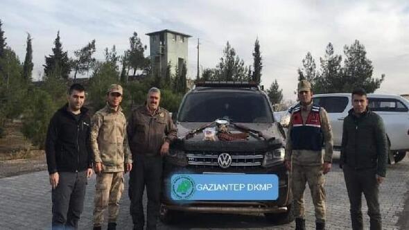 Kaçak avcılar suçüstü yakalandı