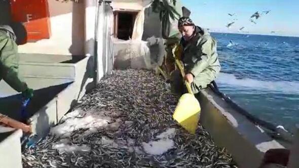 Tekirdağda umduğunu bulamayan balıkçılar Karadenize açıldı