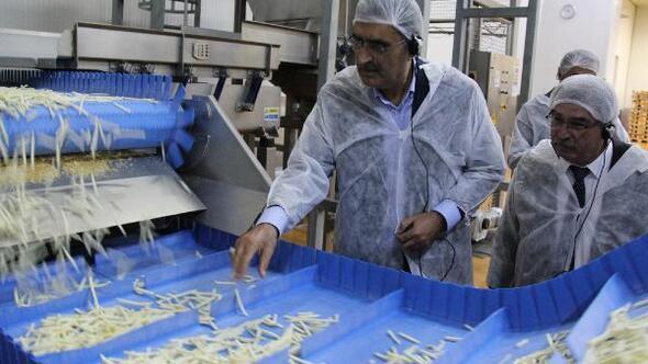 Konya Şekerden patates ve soğan üreticisine 107 milyon ödeme