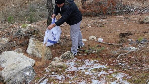 Amasyada karlı bölgelere hayvanlar için yem bırakıldı