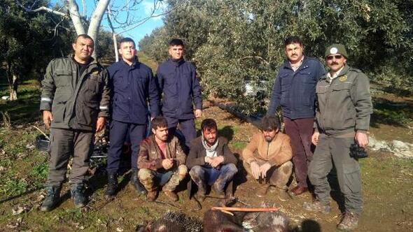 Eti şifalı diye oklu kirpi avlayan 3 kişiye 40 bin lira ceza