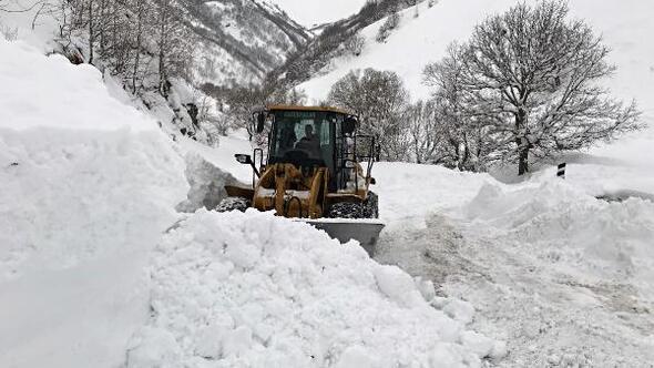Muşun dağ köylerinde zorlu karla mücadele