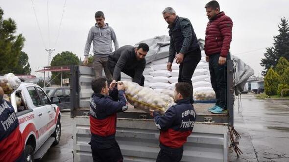 Osmaniyeden deprem bölgesine yardım TIRı