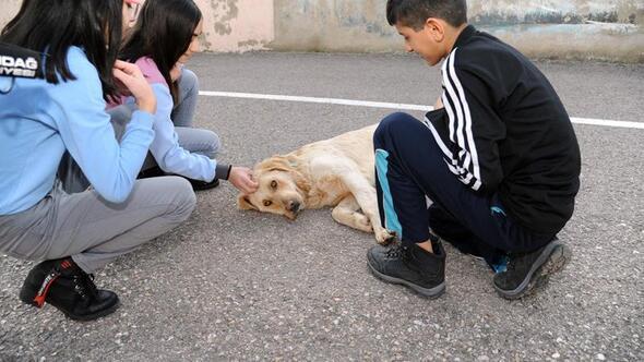 Çocuklar Max'i  çok sevdi