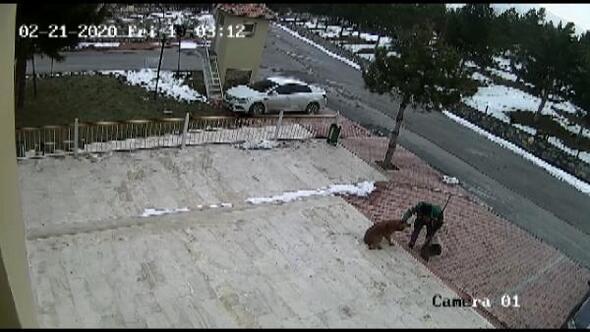 Temizlik görevlisinin, köpekle tokalaşması kamerada