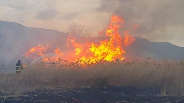 Burdur Gölü kenarında sazlık yangını