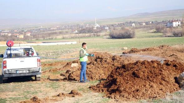 Elazığ Belediyesi'nden larva ile mücadele