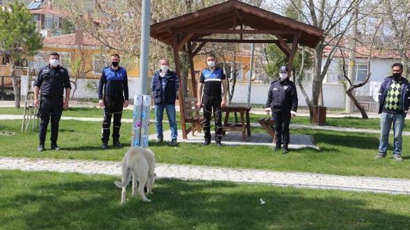 Sivrihisar'da sokak hayvanları için besleme alanları oluşturuldu