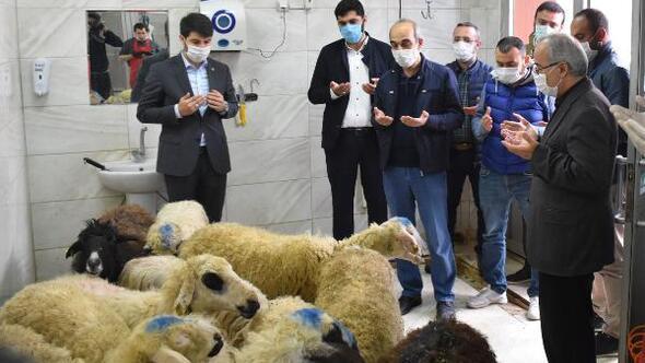 AGDden koronavirüsün son bulması için 41 kurban