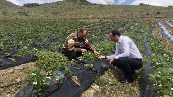 Kaymakam Sarıdoğan, çiftçilerle bir araya geldi