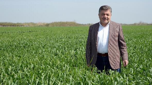 Buğdayda açıklanan alım fiyatı maliyetini karşılamıyor