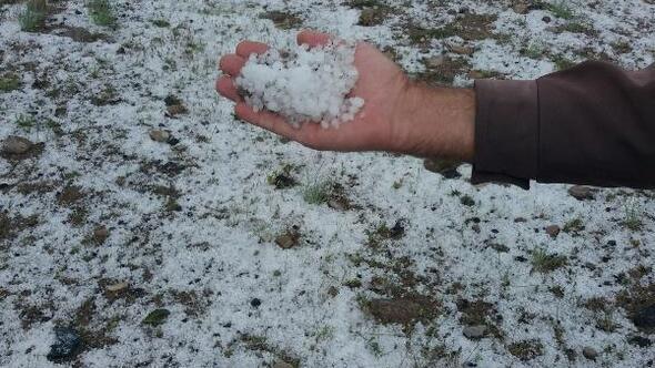 Nevşehirde ekili arazileri dolu vurdu