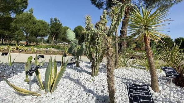 PAÜ Botanik Bahçesi ziyarete açıldı