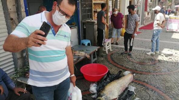 Edirnede gölette 2 metrelik yayın balığı yakalandı
