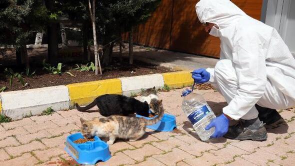 Konya Büyükşehir Belediyesinden Bir kap yemek, bir kap su kampanyası