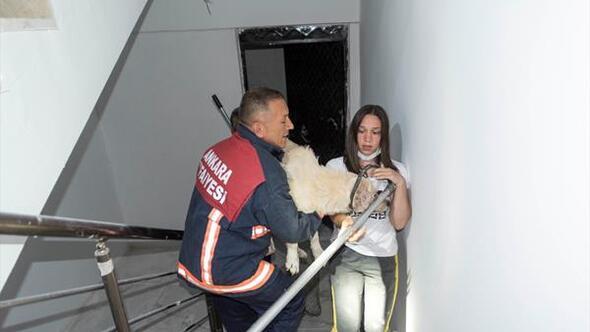 Merdiven boşluğundan güçlükle kurtarıldı