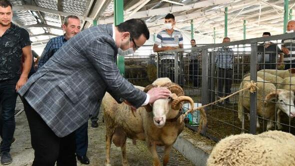 Mustafakemalpaşa Belediye Başkanı Kanar, kurban pazarını ziyaret etti