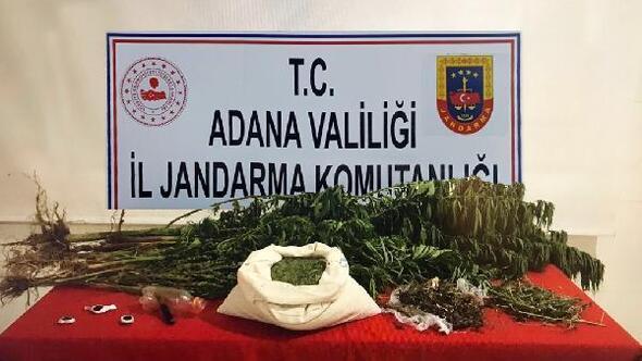 Adanada bir evde 8 kilo esrar ele geçirildi