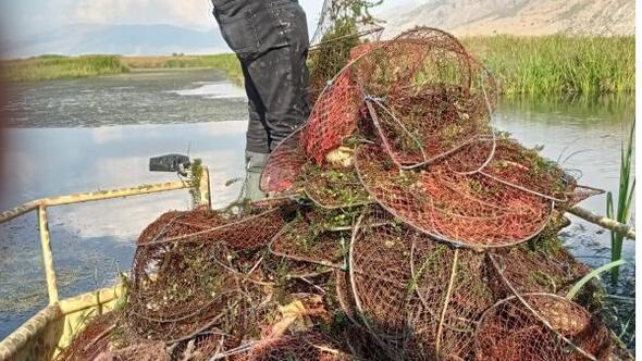 Karamık Gölünden 650 pinter toplandı