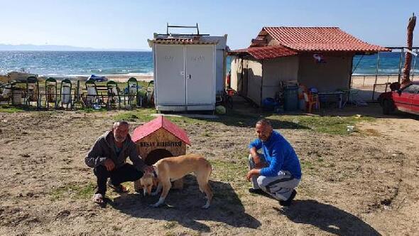 Belediye barınağından köpek sahiplenene köpek evi hediye