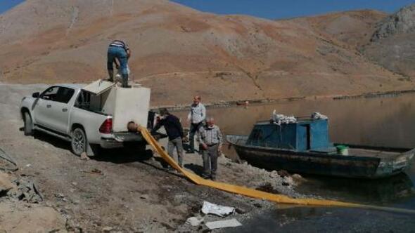Çelikhanda baraj gölüne 115 bin sazan bırakıldı