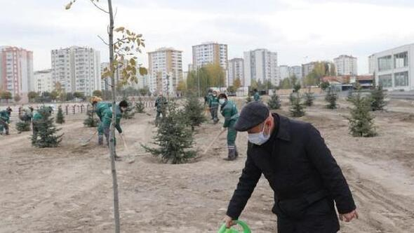 Başkan Çolakbayrakdar, Cırgalanda ağaç dikti