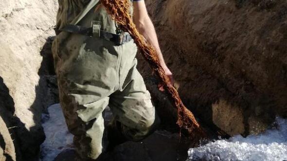 İçme suyu hattından 5 metrelik kunduz çıktı