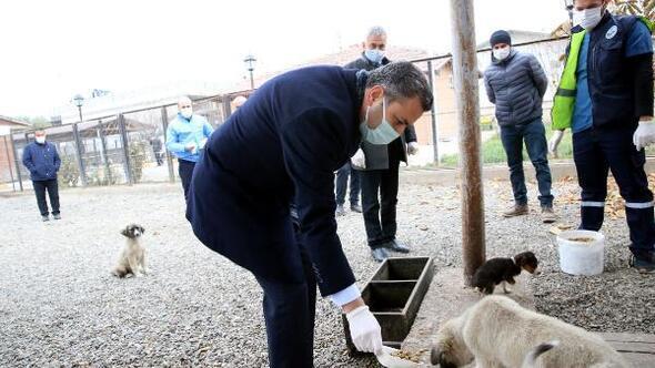 Başkan Eroğlu: Hayvanlar bizlere Allahın emanetidir