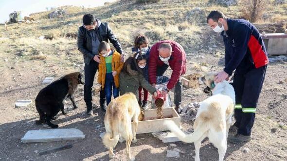 Başkan Kavuş miniklerle sokak hayvanlarını besledi
