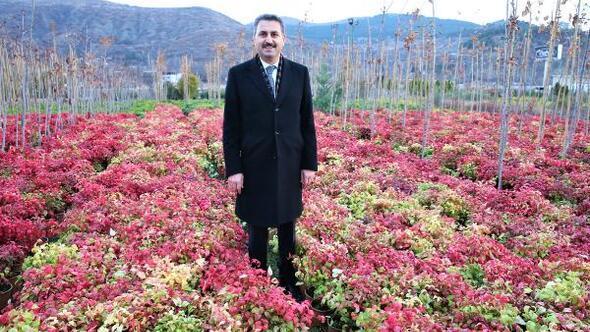 Başkan Eroğlu: Daha yeşil bir Tokat için çalışıyoruz