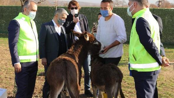 Bursa Büyükşehir Belediye Başkanı Aktaş, Emekli Hayvanlar Çiftliğini ziyaret etti