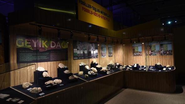 Konya Bilim Merkezinde Fosil-Taş-Mineral sergisi