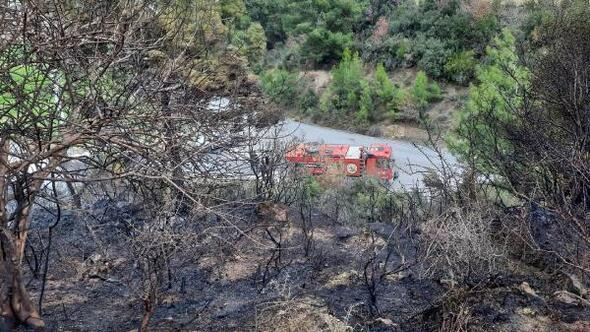 Manavgatta çalılık alan yangını