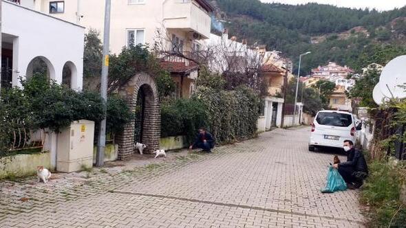 Marmariste kısıtlama kapsamında sokak hayvanları unutulmadı