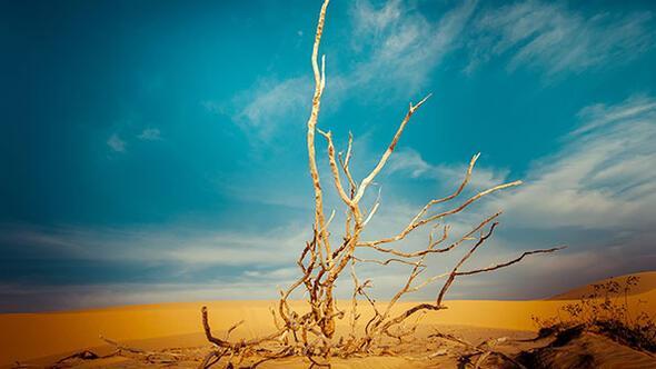 İklim planlamaları raporlarda kalıyor
