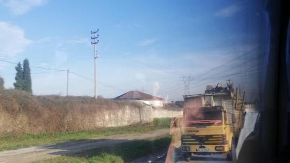 Sakarya'da Kavak ağaçları yola saçıldı