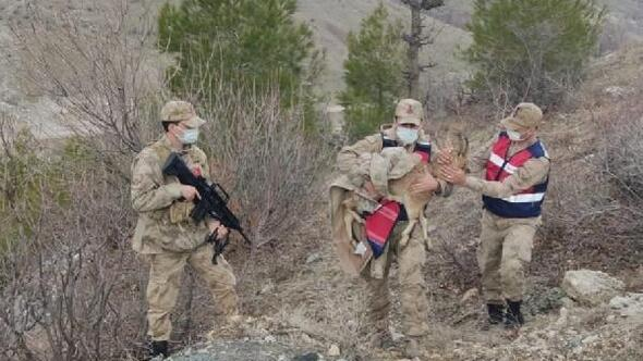 Ayağı kırık dağ keçisi jandarma tarafından kurtarıldı
