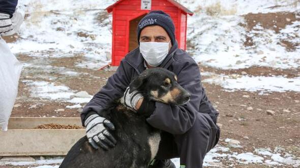 Meram Belediyesi, sokak hayvanları için yapılan besleme noktalarına mama bıraktı
